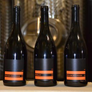 Wein-Probepakete
